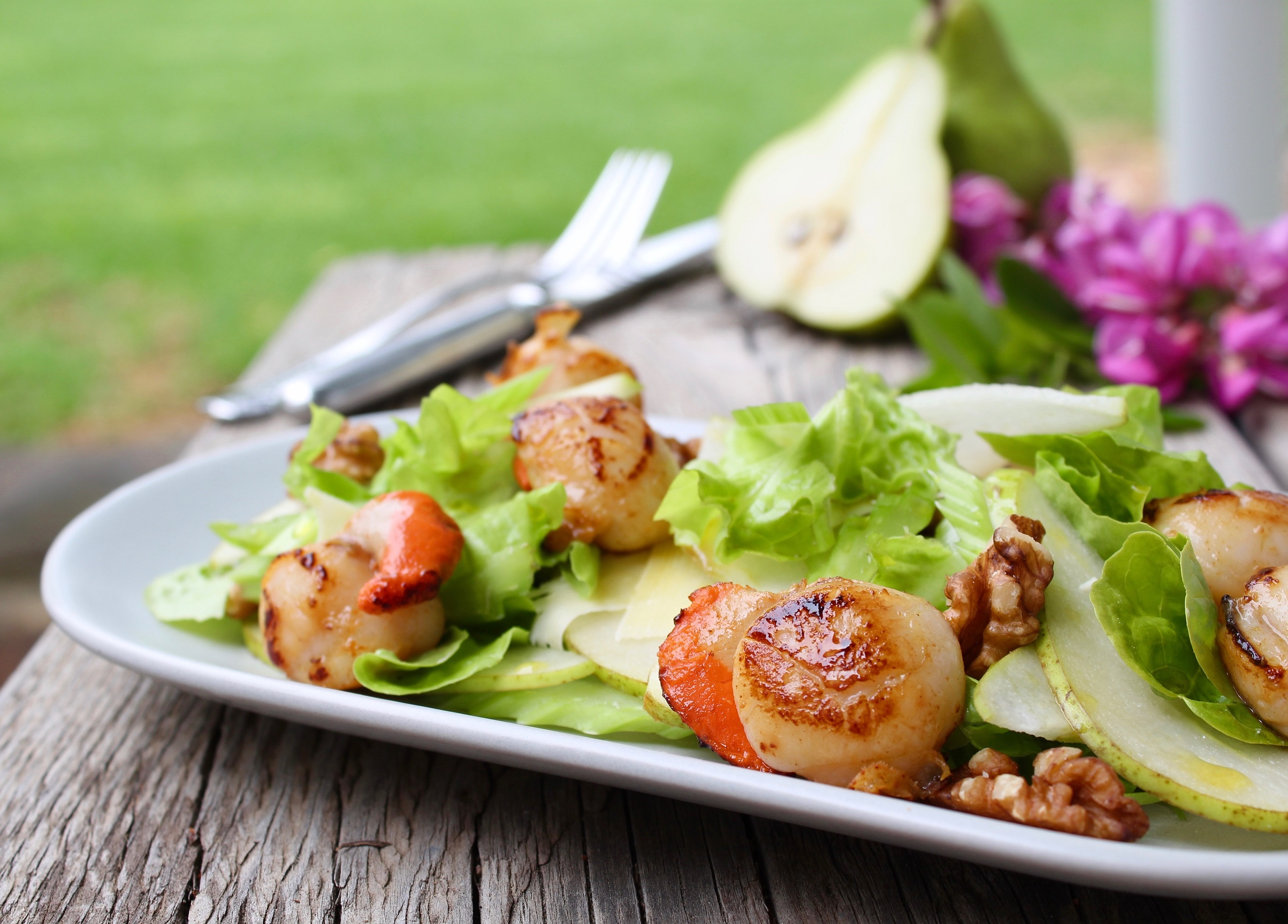 Seared Scallops with Summer Salad - Recipe - Ferguson ...